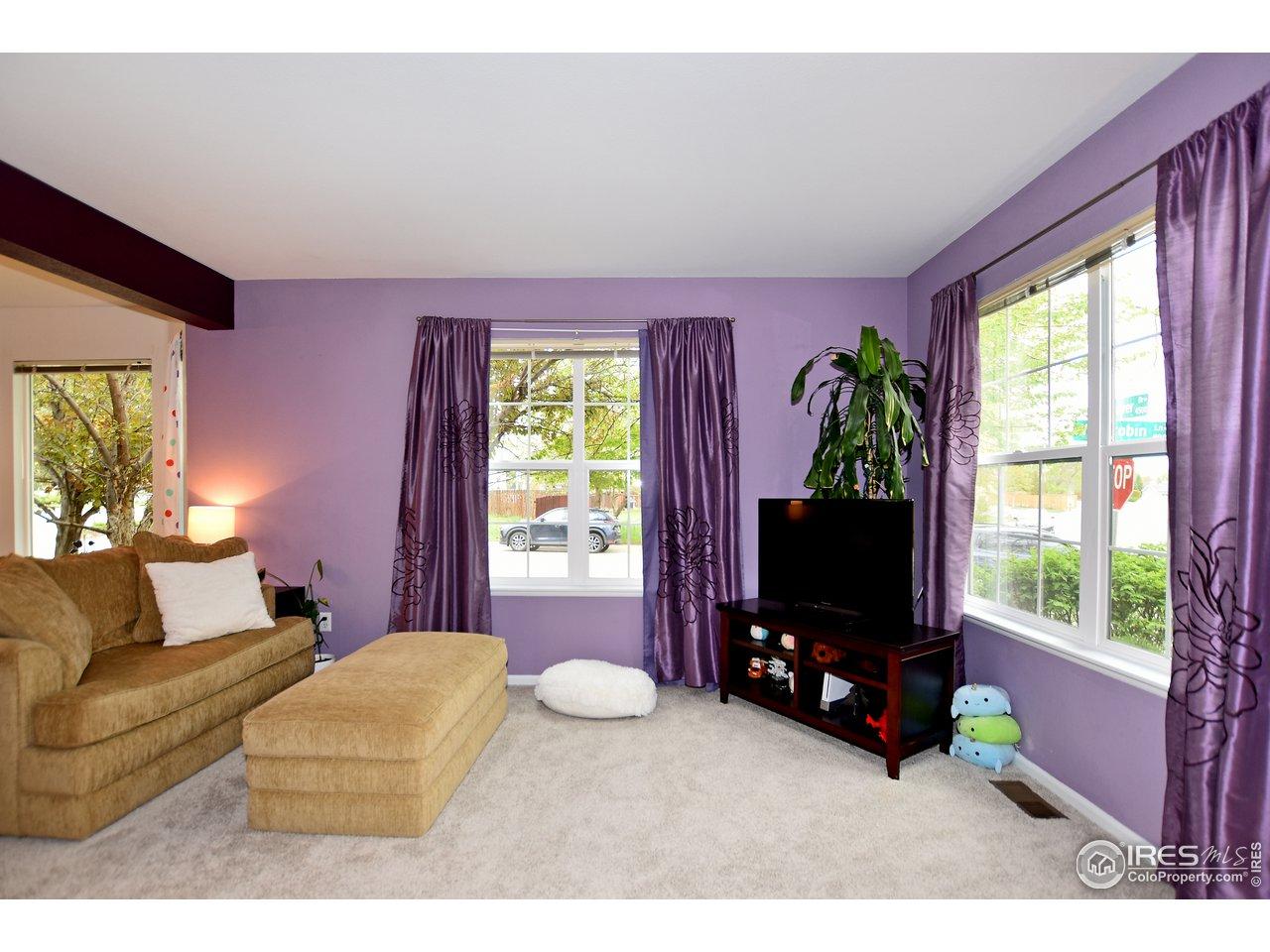 Great natural light illuminates the living room.