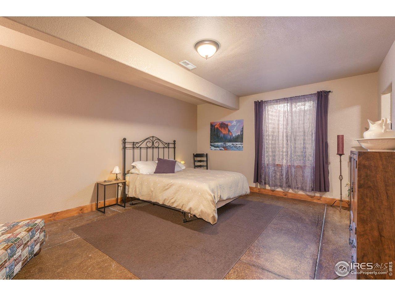 Generous basement bedroom w / walk in closet