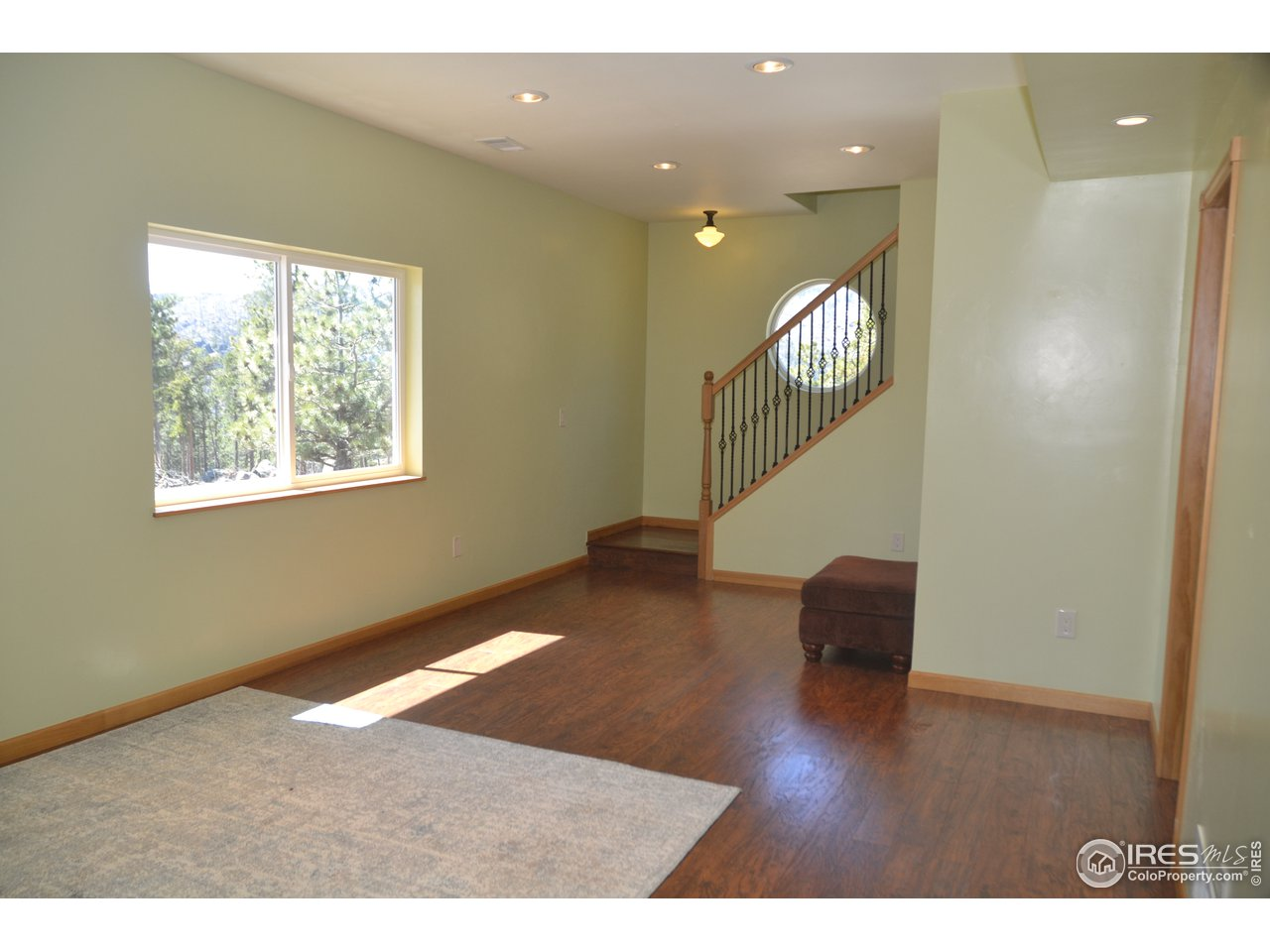 Lower Living/Family Room