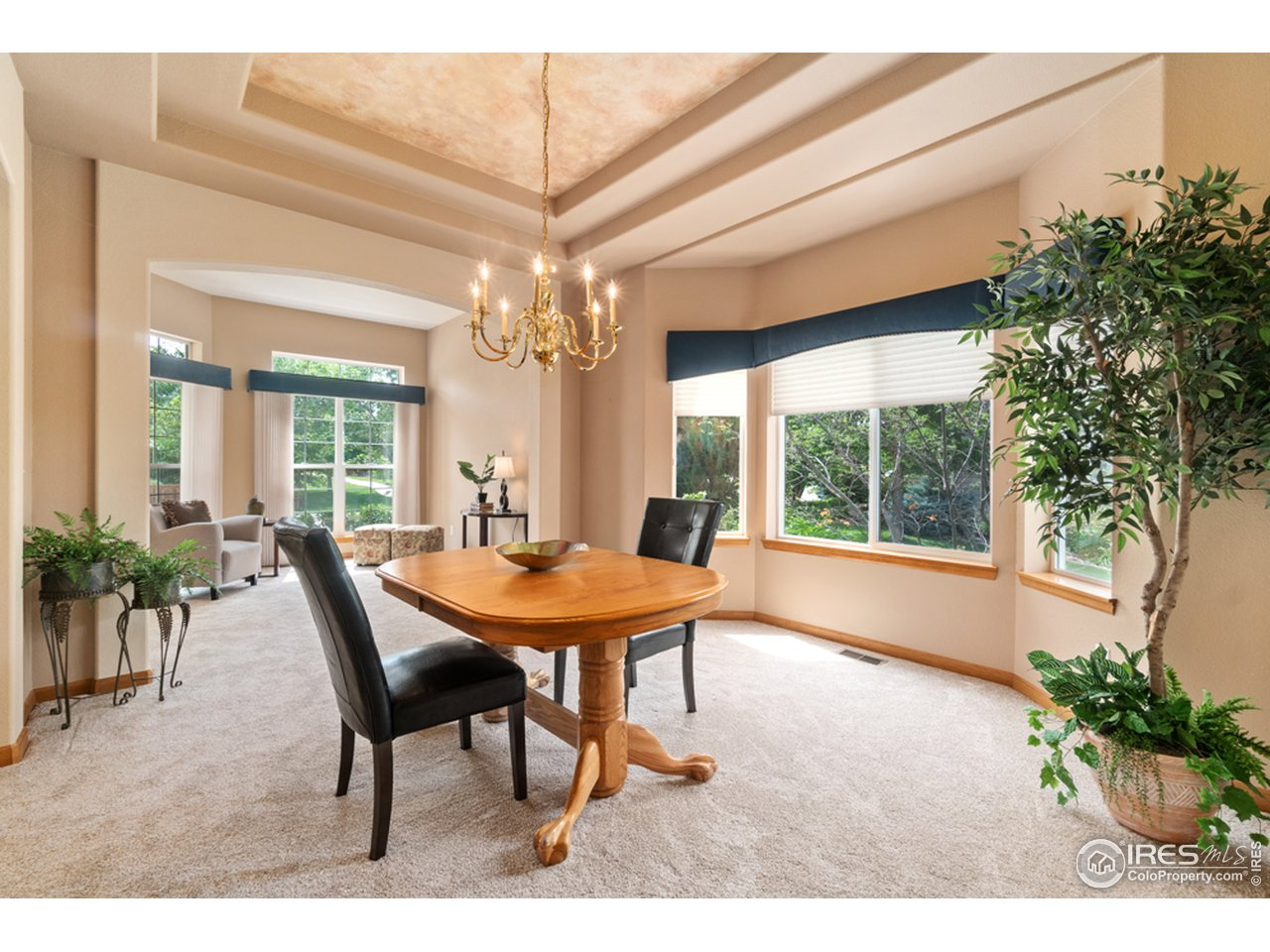 Dining Area/Coffered Ceiling