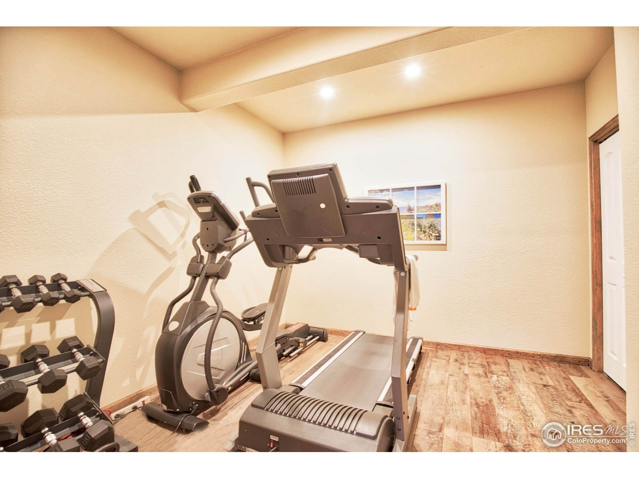 Basement workout room