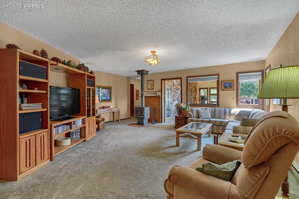 Large family room with built in speakers, wood burning stove and 3 storage close