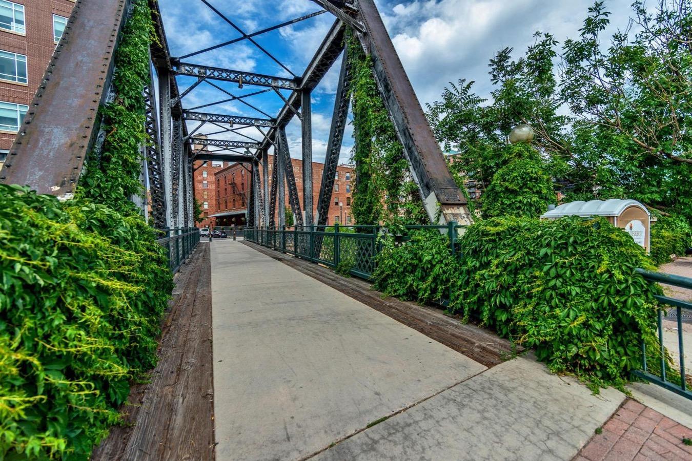Steelbridge & Cherry Creek Trail