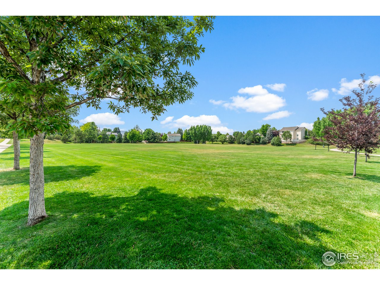 Many open spaces throughout neighborhood, easy to walk to