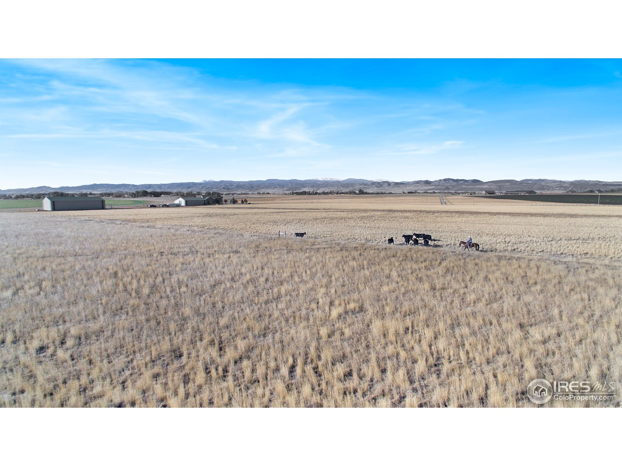 Over 30 Acres in Grass Hay