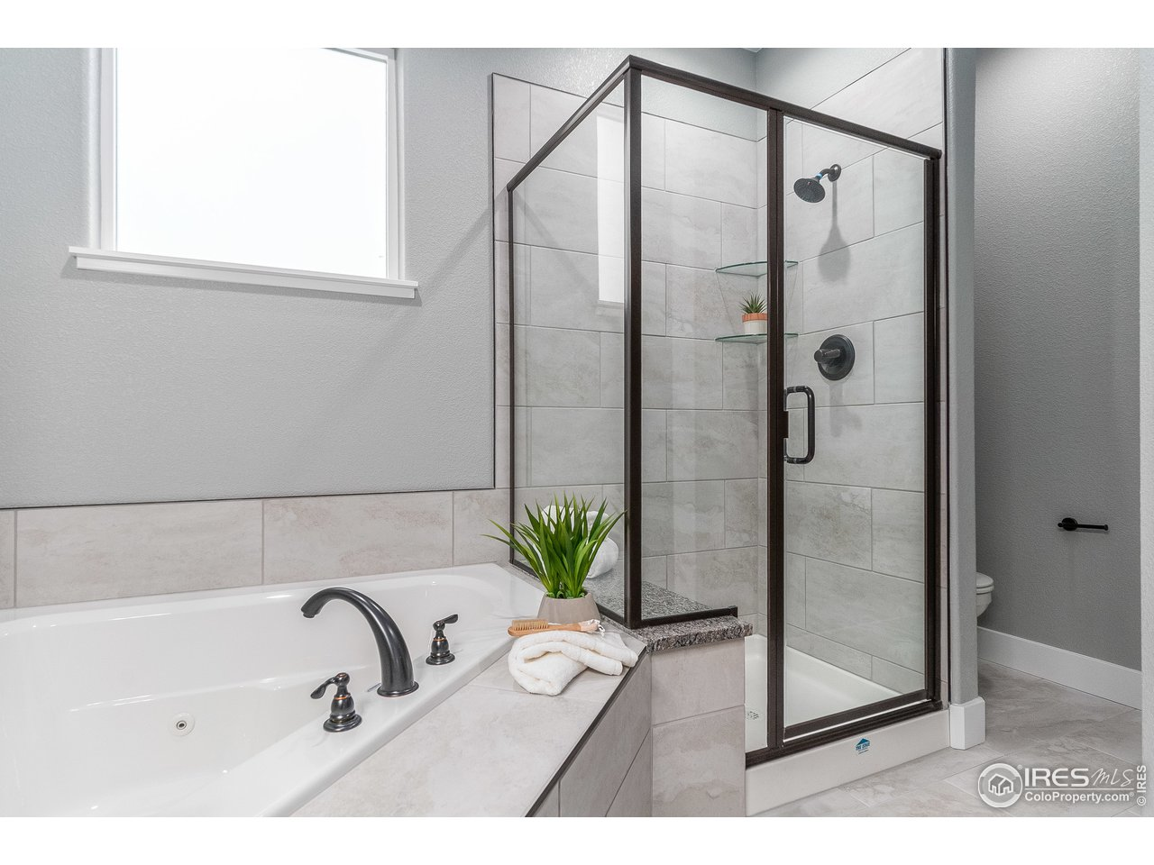 Tub and Shower in Master Bath