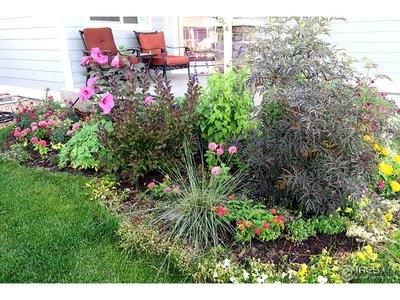 Stop dreaming & start enjoying your own garden!