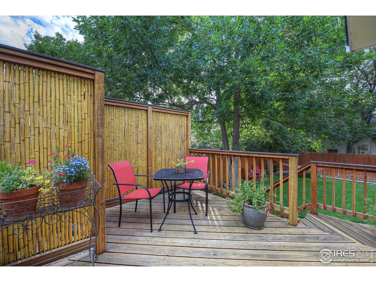 Refinished back deck