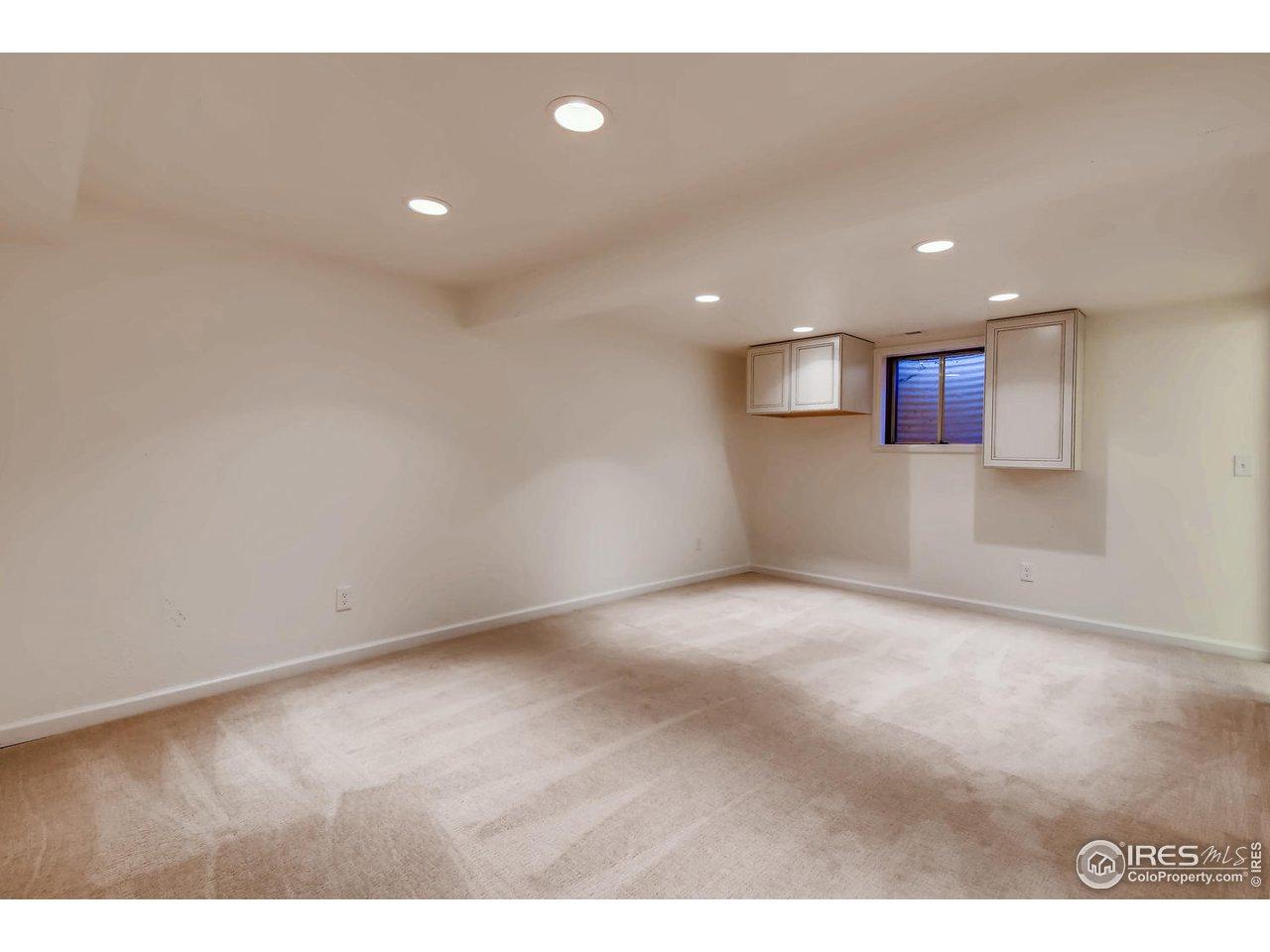 Lower Level Rec/Bonus Room
