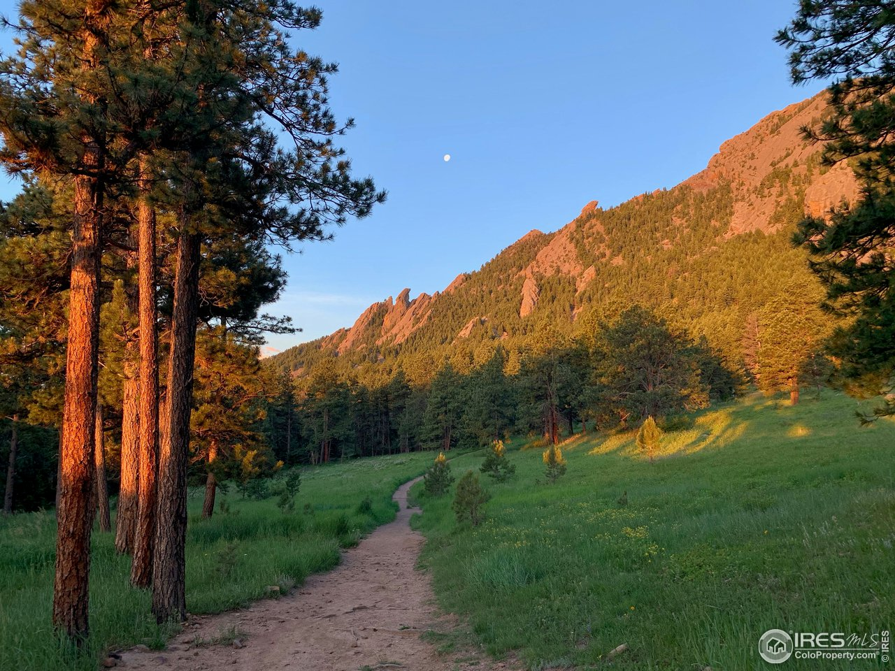 Nearby Open Space Trails