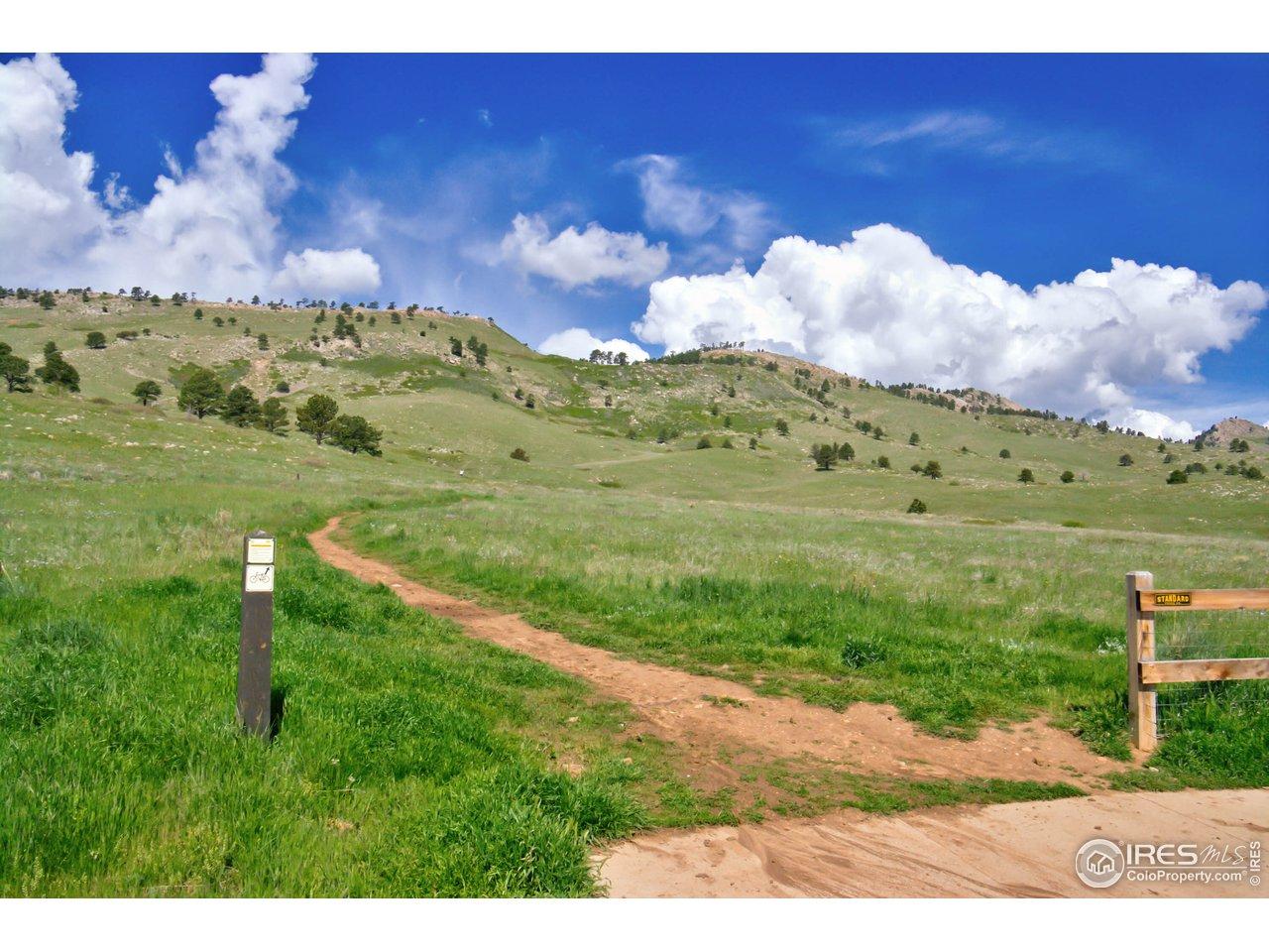 Neighborhood Hiking/Biking Trails