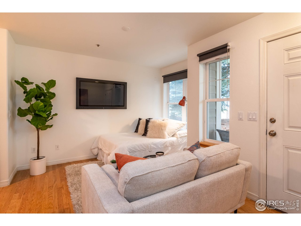 Bright Living Room /Bedroom Area