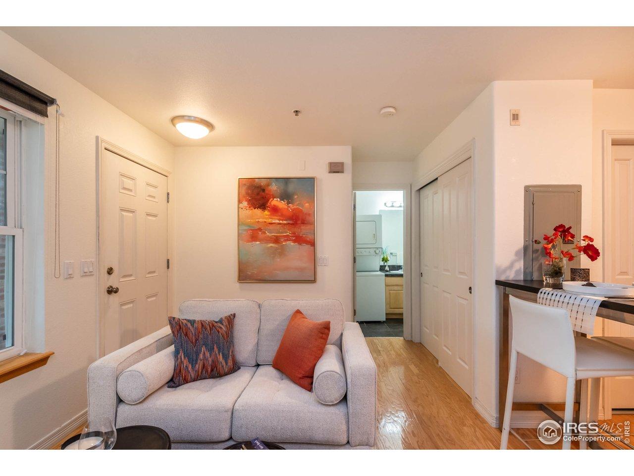 Living Room Area w/ Excellent Closet Space
