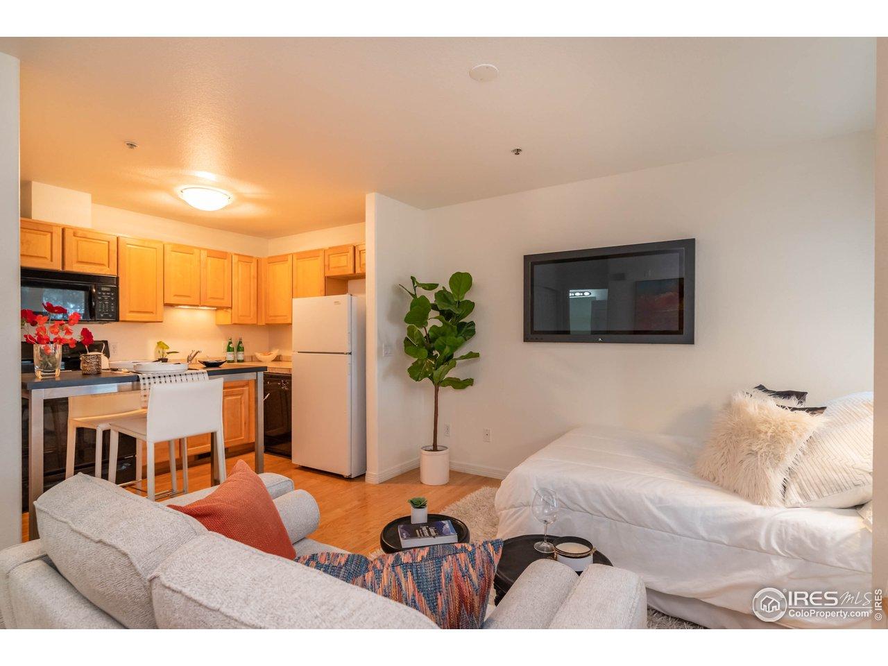 Living Room /Bedroom Area