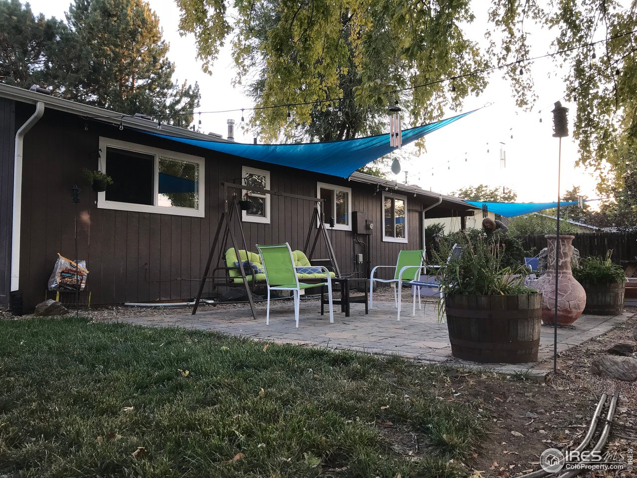 Backyard in Summer