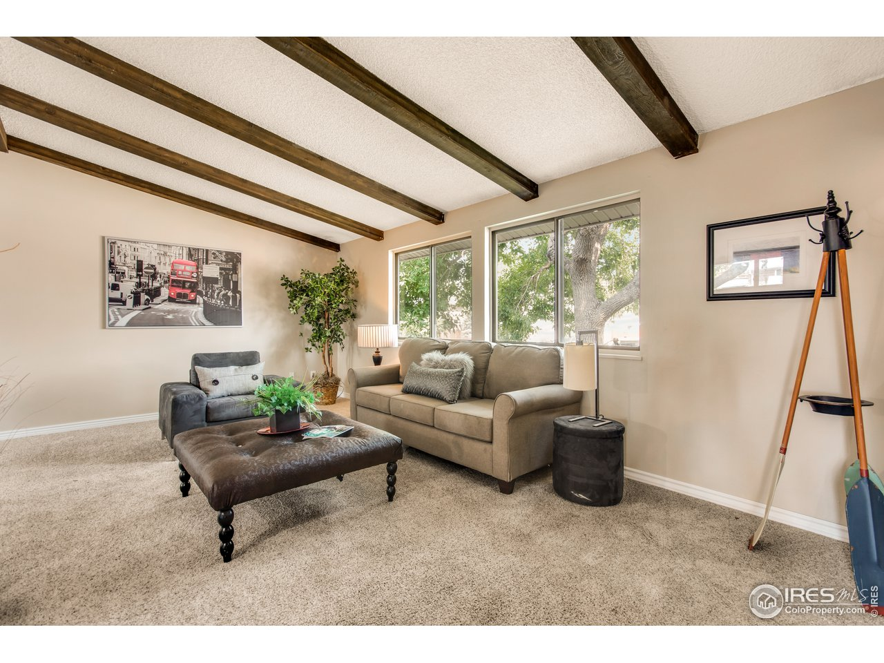 Large Open Living Room