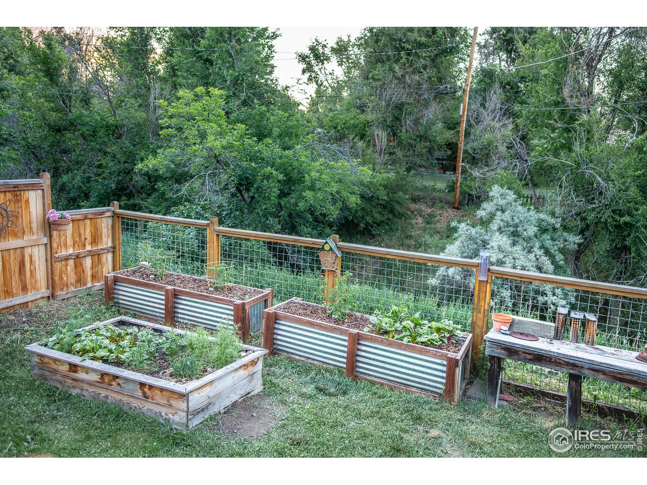 Spacious Backyard Opens to Seasonal Stream