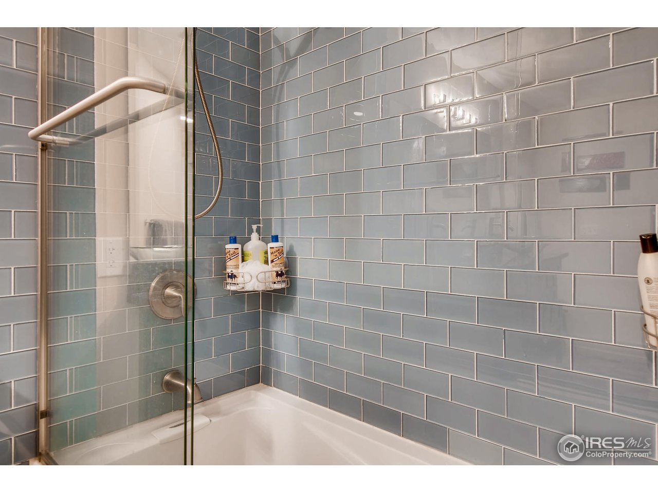 Master Shower and bathtub