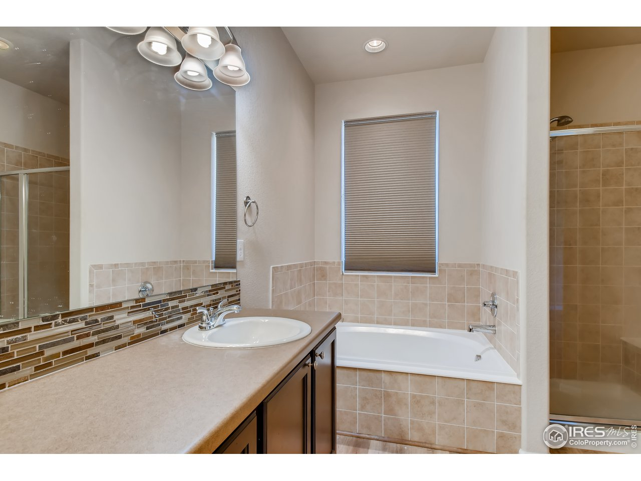 Primary Bathroom with Separate Tub and Shower