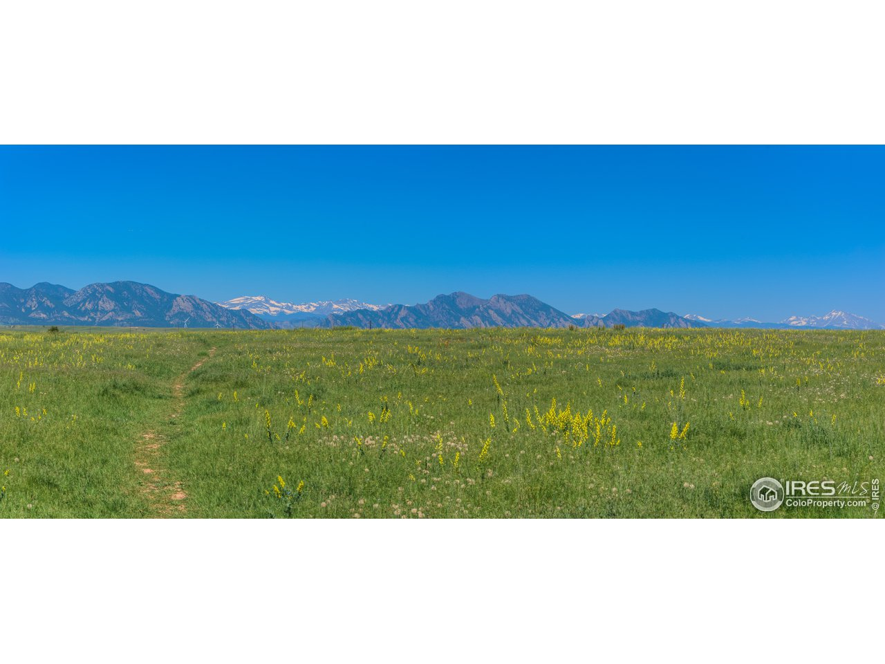 Summer views in the nearby Westminster Hills Open Space