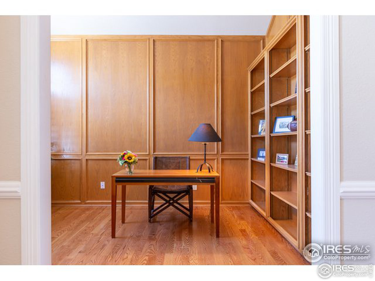 Study / Library