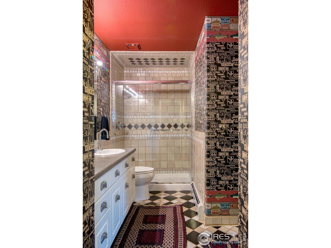 fun lower level bathroom