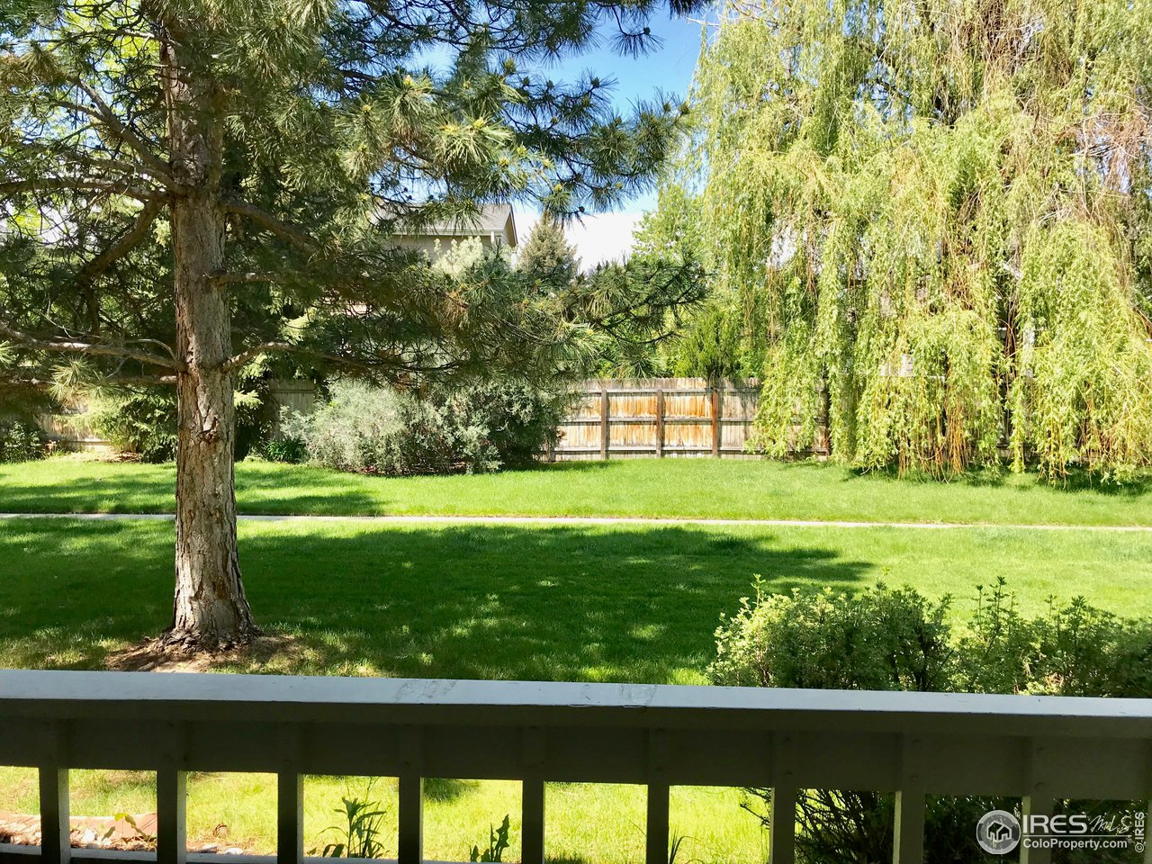 View from back patio 1