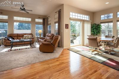 Custom Upgraded Living Room Windows