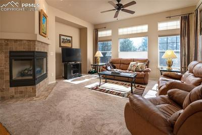 Cozy but spacious living room with gas fireplace and newer carpet