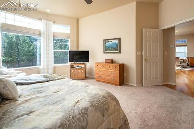Large Main Level Master with newer carpet and lots of natural light!