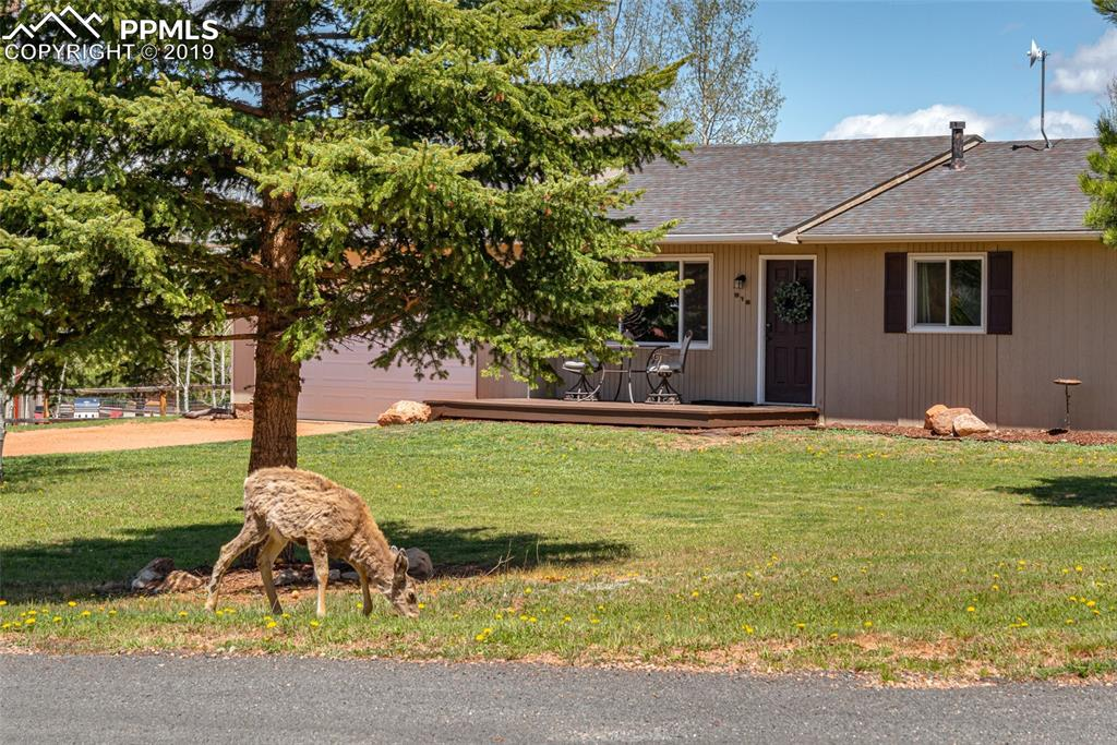 Beautiful half-acre ranch style home.