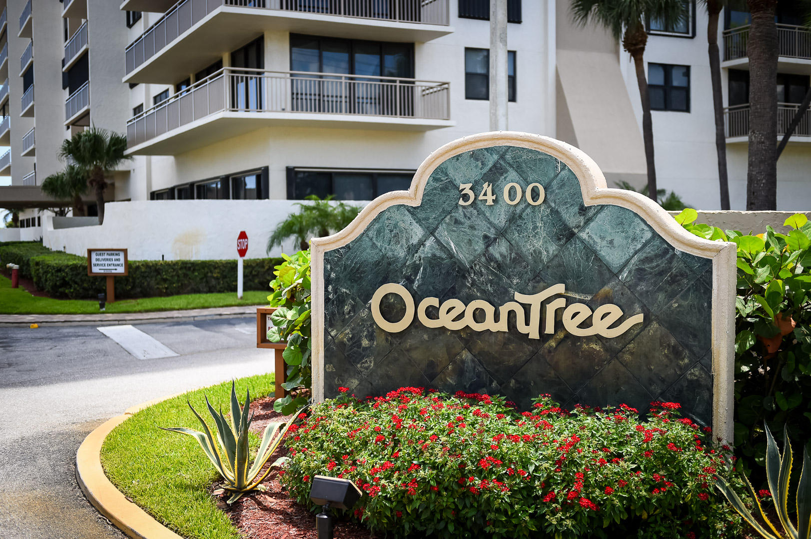 WELCOME TO OCEANTREE