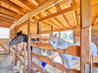 Spacious horse stalls