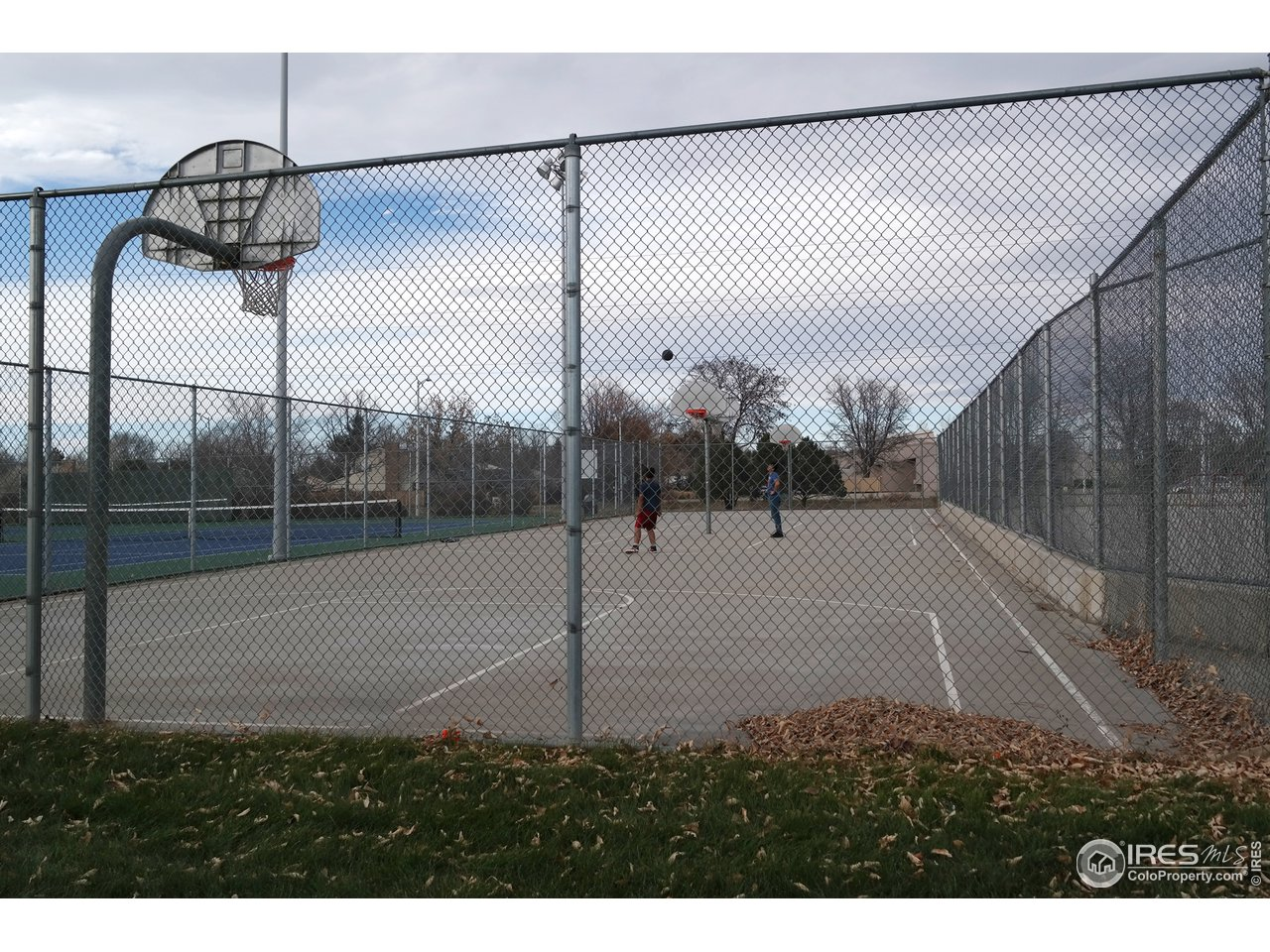 Basketball & Tennis Courts at Carr Park