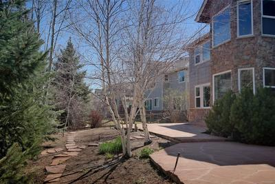 East Facing Backyard Provides Shade for Patios