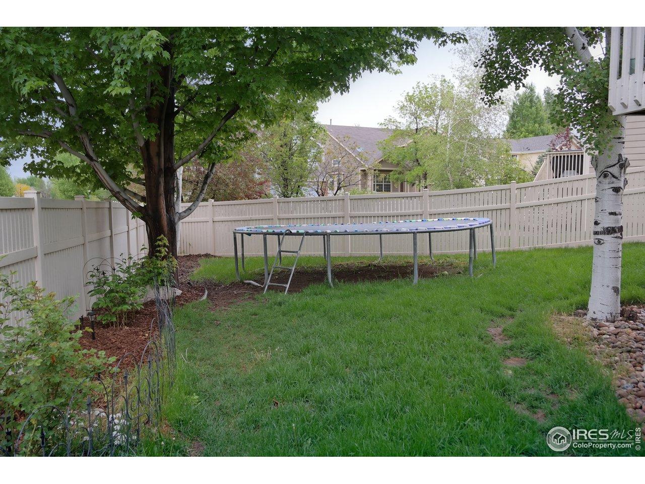 Backyard for Play