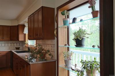 New Dining Room Window w/Glass Shelves for Herbs