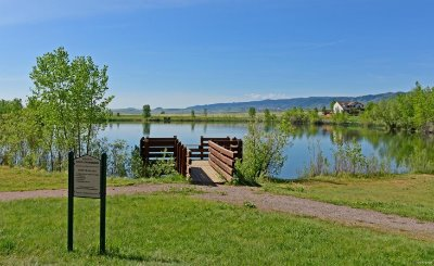 Fishing pond too!