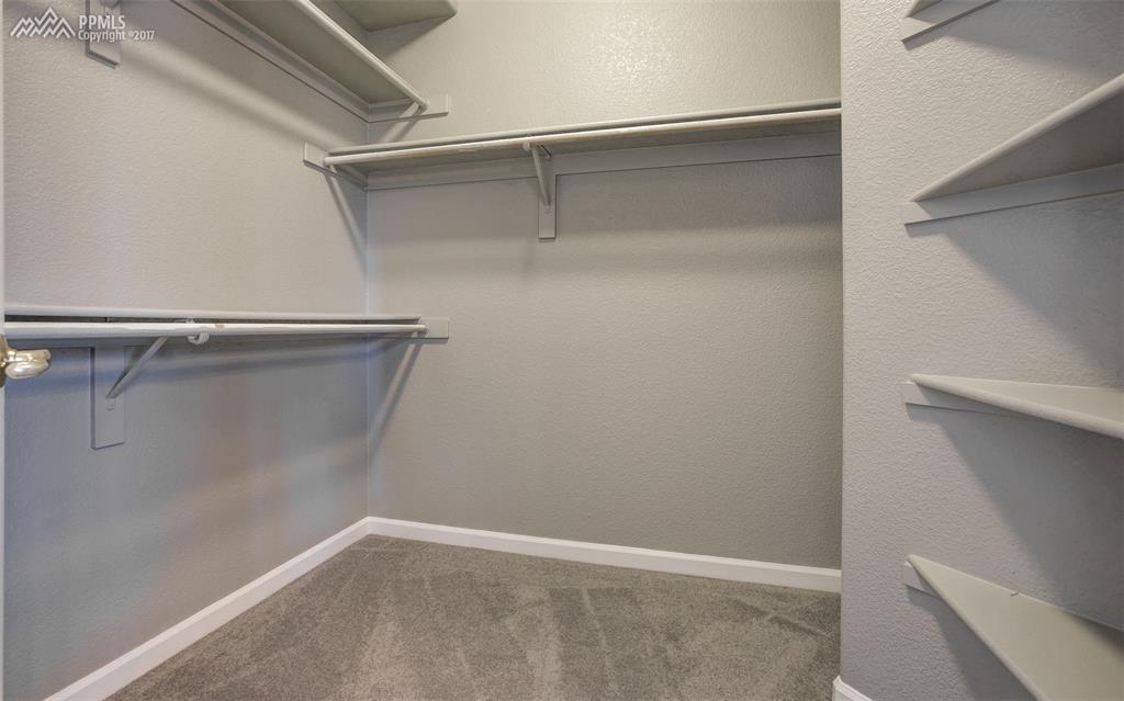 Ample Space and Shelving