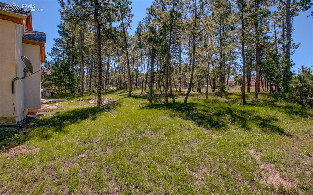 Large Lot With Private Feel