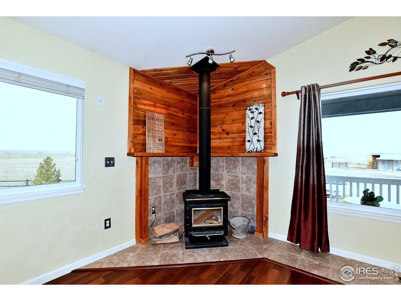 Amazing wood burning fireplace