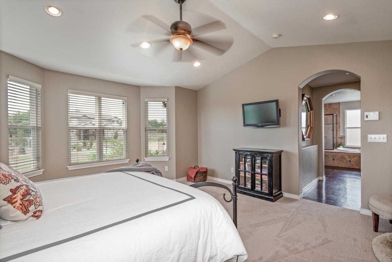 Master Bedroom Suite w/  Bathroom/Walk In Closet
