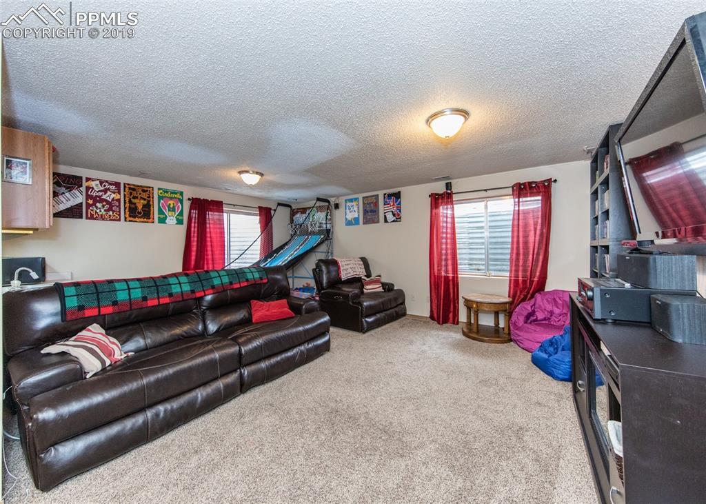Basement Living Room