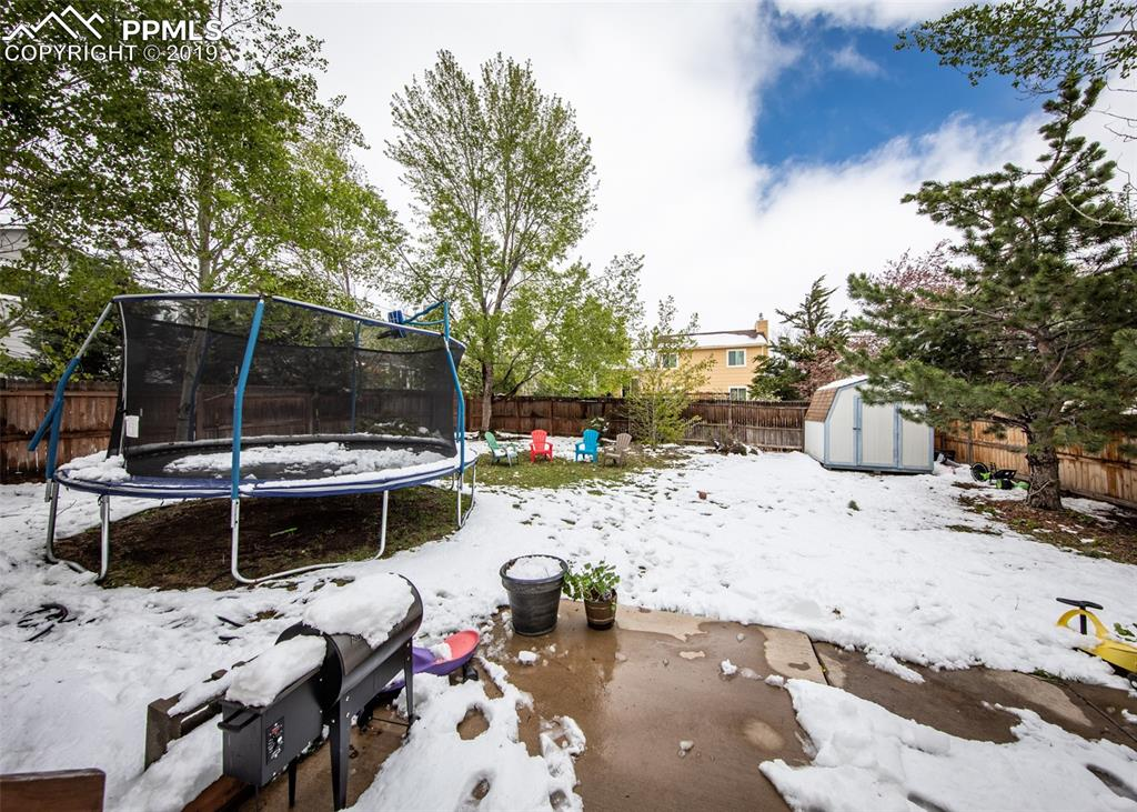 Open Backyard after May snowstorm