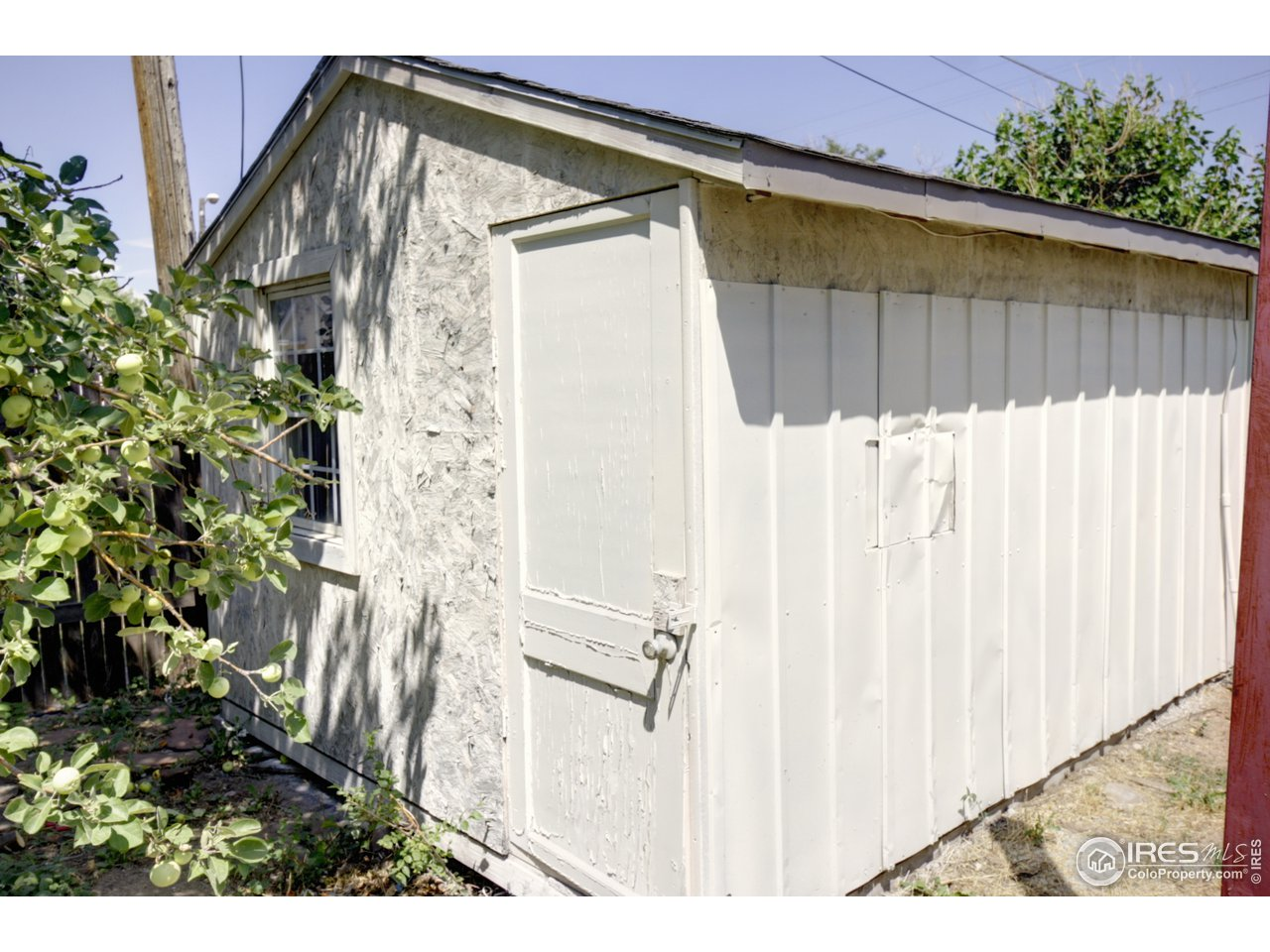 Shed #2