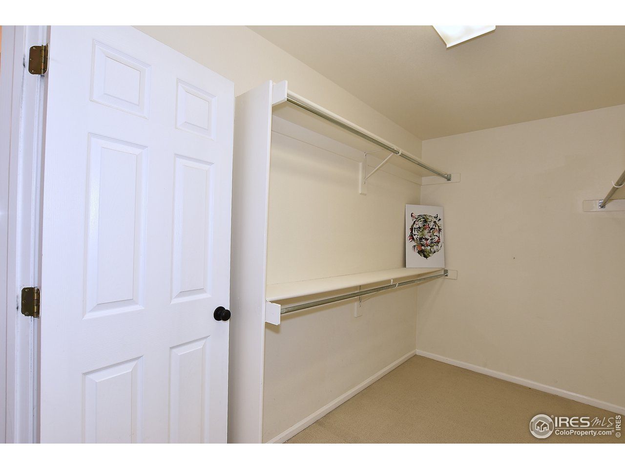 Expansive Walk-In Closet