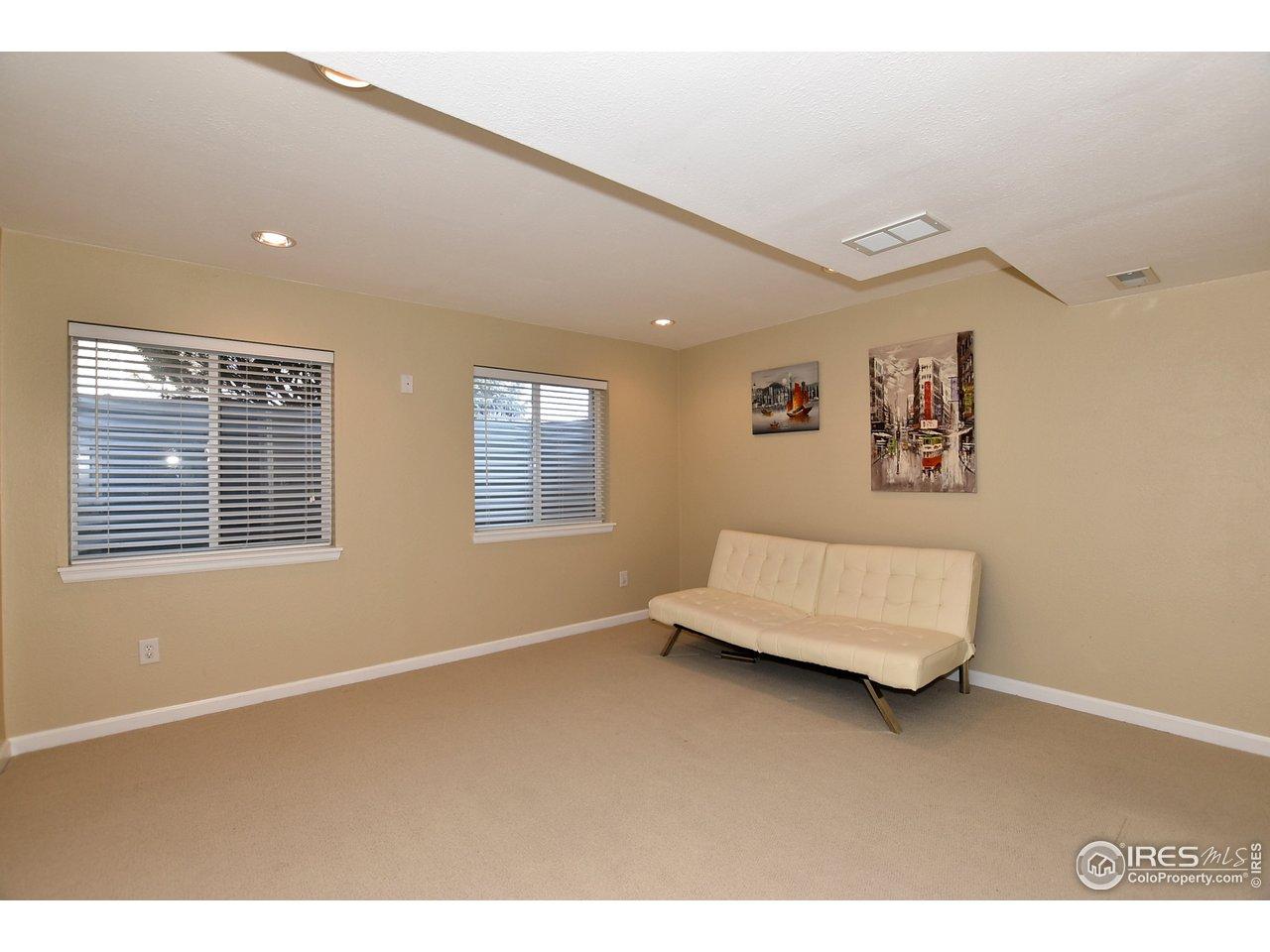 2nd Basement Flex Room