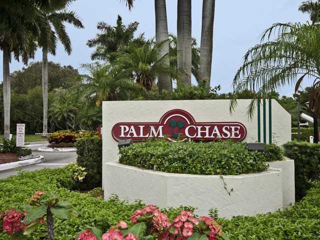 Palm Chase media 3
