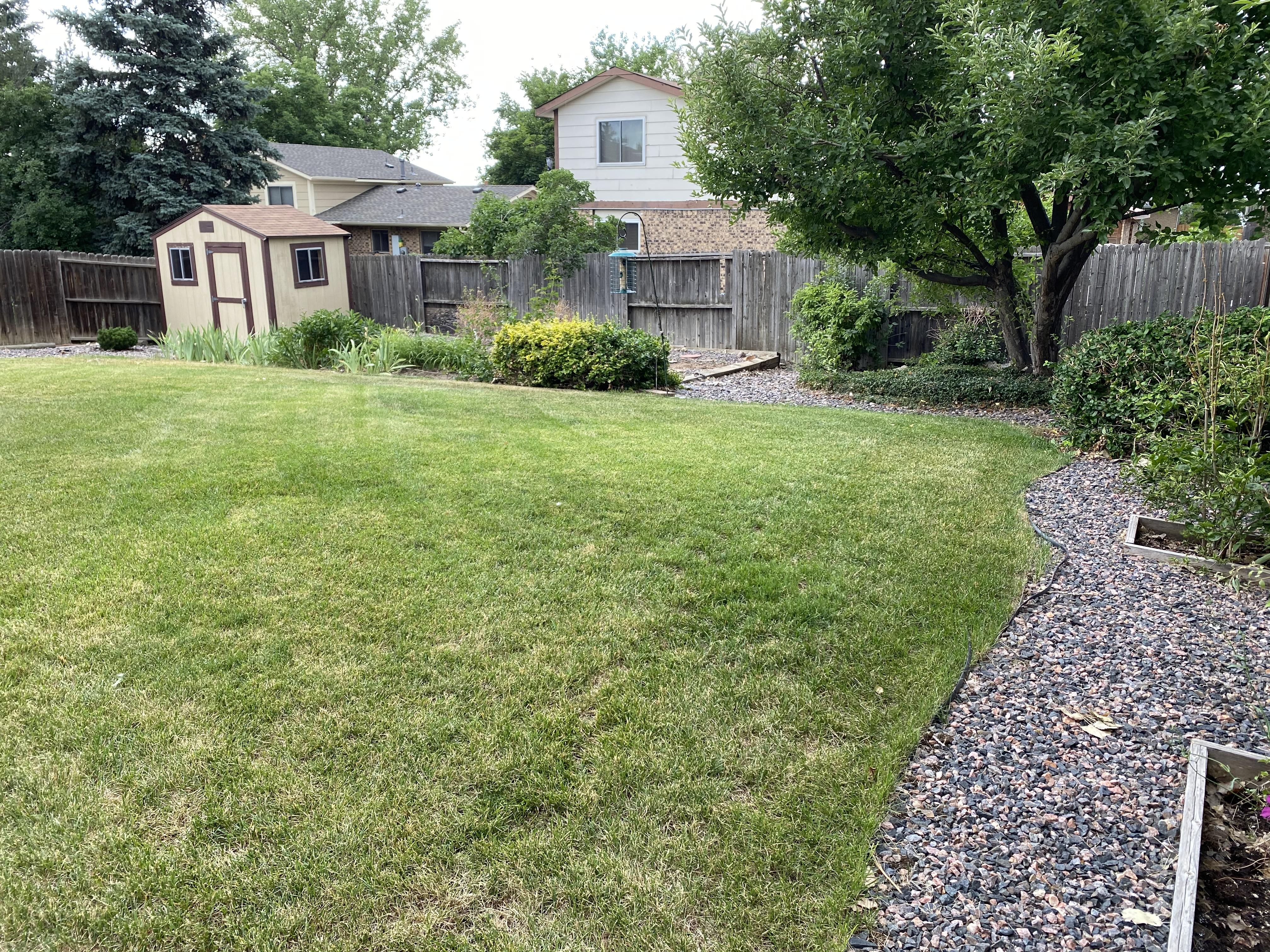 Larger Backyard