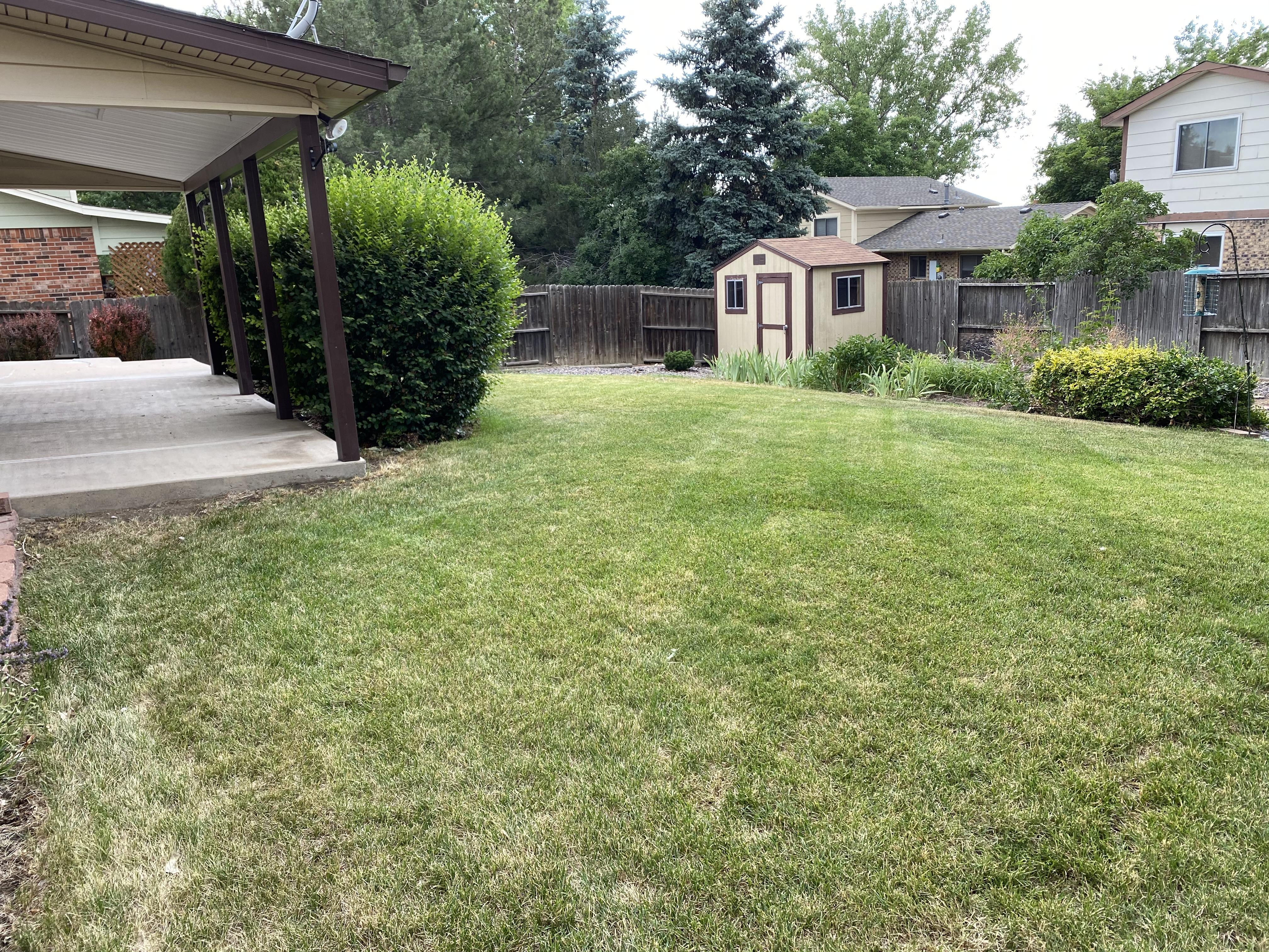 Mature Landscaping